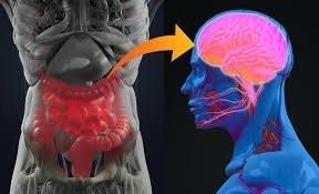 ارتباط بین میکروبیوتای روده و اوتیسم