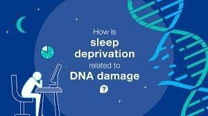 محرومیت از خواب باعث آسیب به DNA می شود