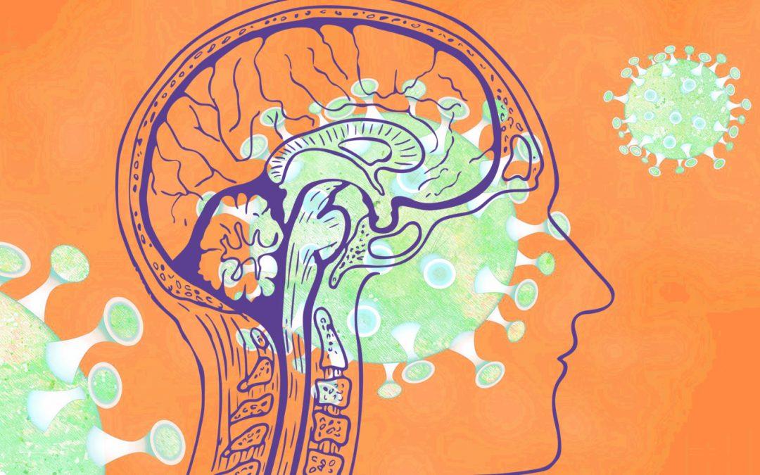 مطالعه ای که تأثیر ویروس کورونا بر مغز را روشن تر می سازد