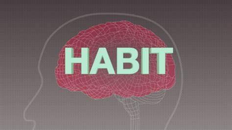 5 روش ساده برای ساخت عادت های سالم