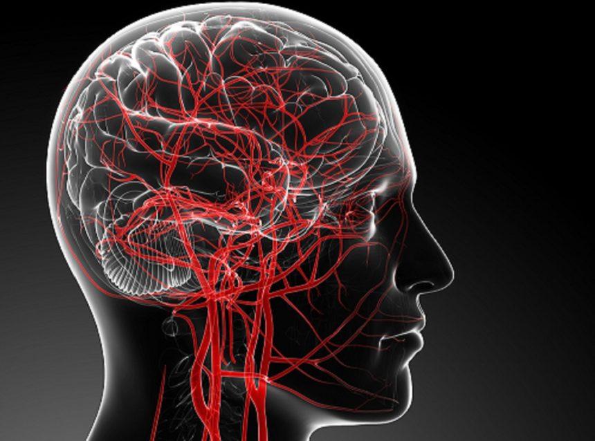 نقش کلسیم به عنوان یکی از مهم ترین عناصر حیاتی بدن در تنظیم خونرسانی مغز