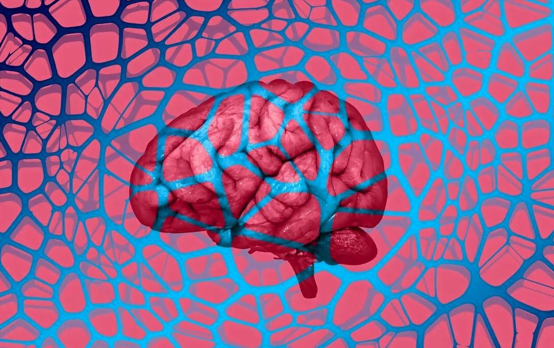 ده نشانه برای تشخیص زودهنگام بیماری آلزایمر